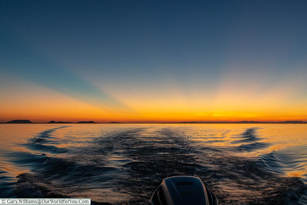 Sunset reflected in the wake of  the boat as we return to the camp.