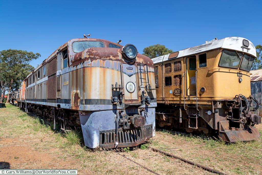 Two diesel locomotive in tracks rusty and weathered.