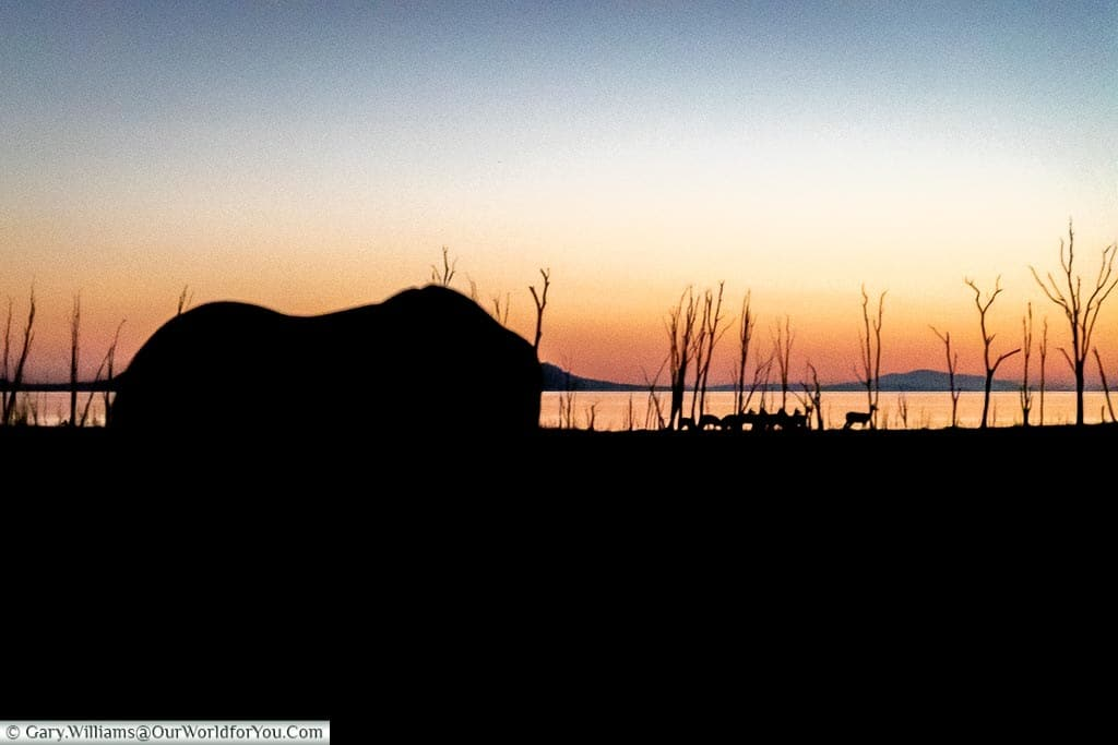 The silhouette of an elephant against a sunset background of Lake Kariba.