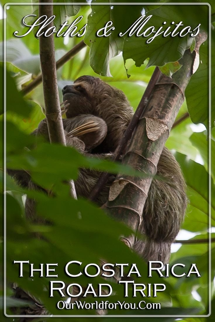 The pin image for our post -'Sloths & Mojitos – The Costa Rica road trip'