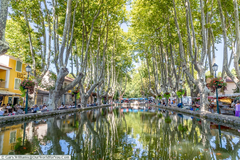 The large raised pond, lined with trees, in the centre of Cucuron filled with large golden koi.  Restaurants line one side, and a market on the other.