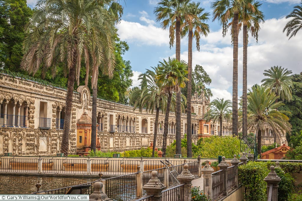 Tall palm trees dominate the view with an ornate high wall as a boundary to the gardens of the Alcazar of Seville.