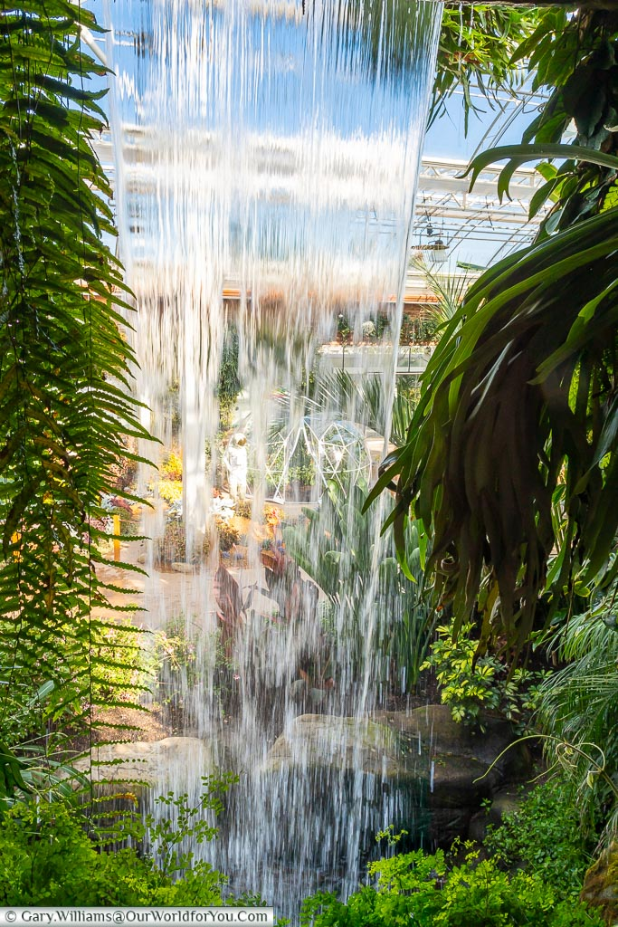 Looking through the waterfall inside the Glasshouse.