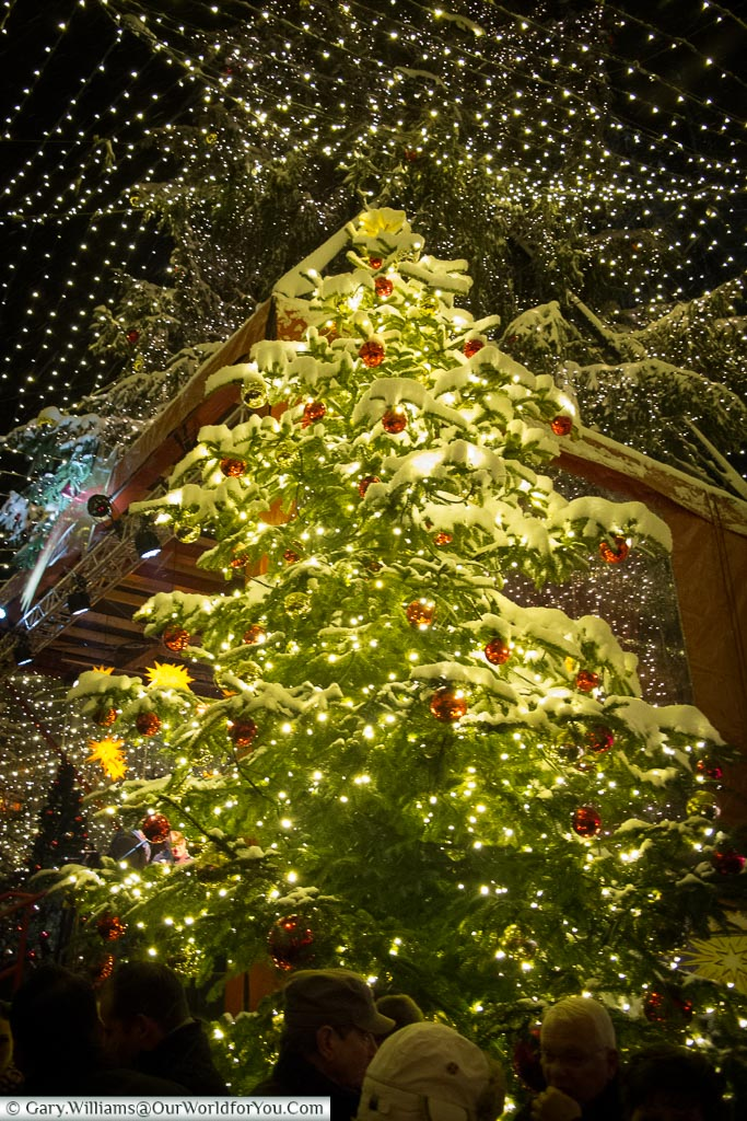 A snow-covered Christmas tree under the blanket of lights at Cologne's Dom Market