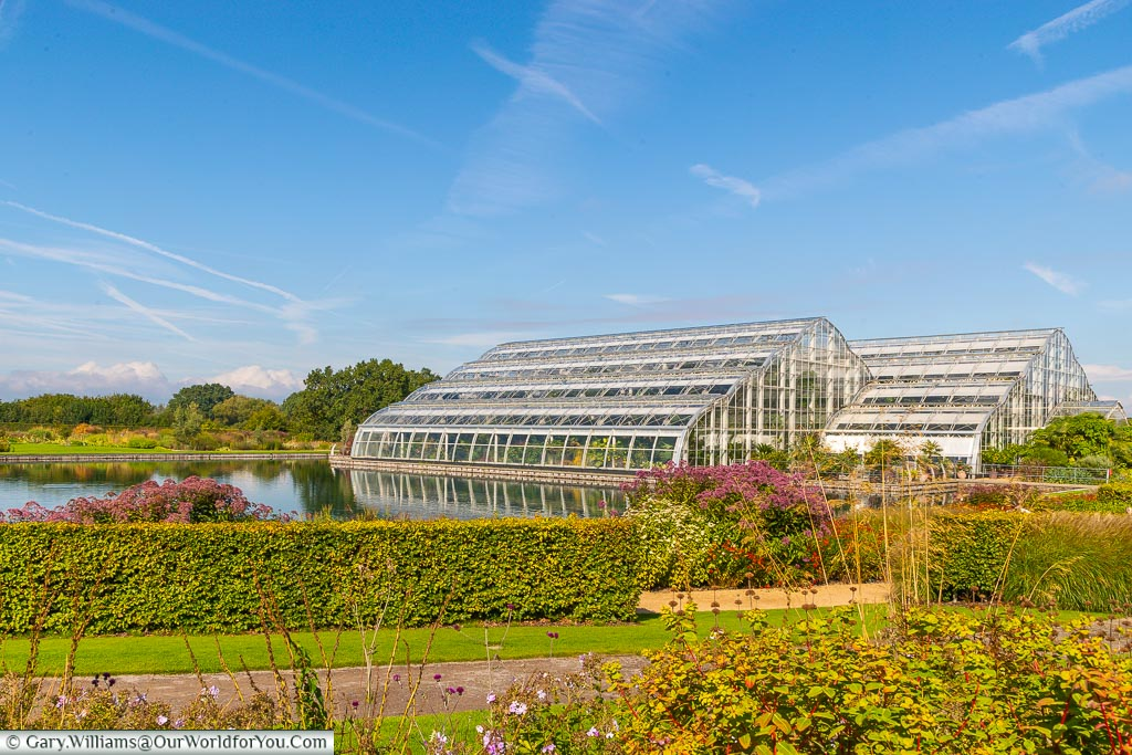 The giant Glasshouse next to the lake that houses RHS Wisley's more exotic horticulture collections.