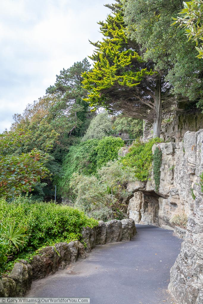 Further down the now tree-lined path, the faux rockface on the right with lower evergreen beds on the left.