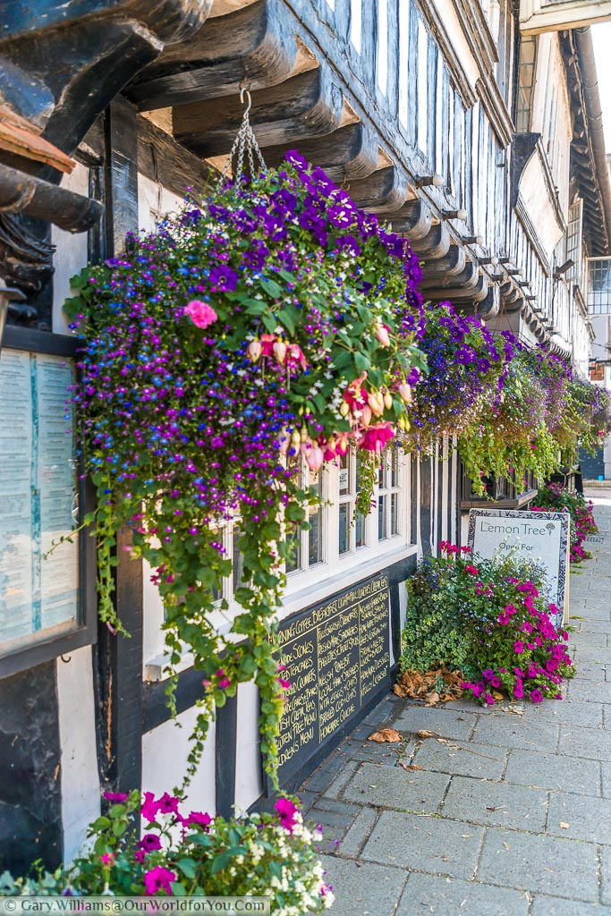 A street scene of hanging baskets being displayed from a half-timbered period building
