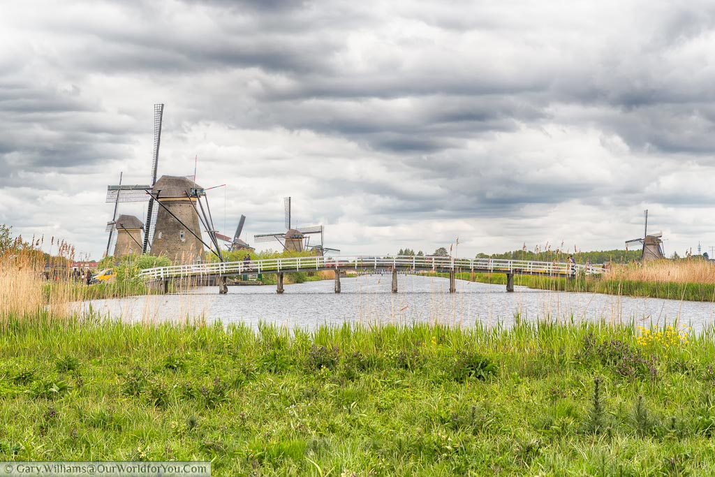 Standing on a grassy bank in front of a large, wide, canal at KinderDjik in the Netherlands. On the left side you can see at least 4 windmills with a further windmill on the righthand side.
