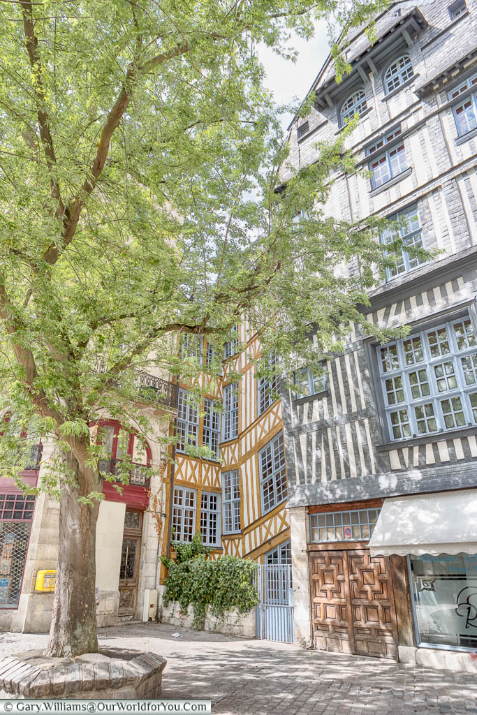 A quiet leafy corner of Rouen framed with half-timbered buildings.