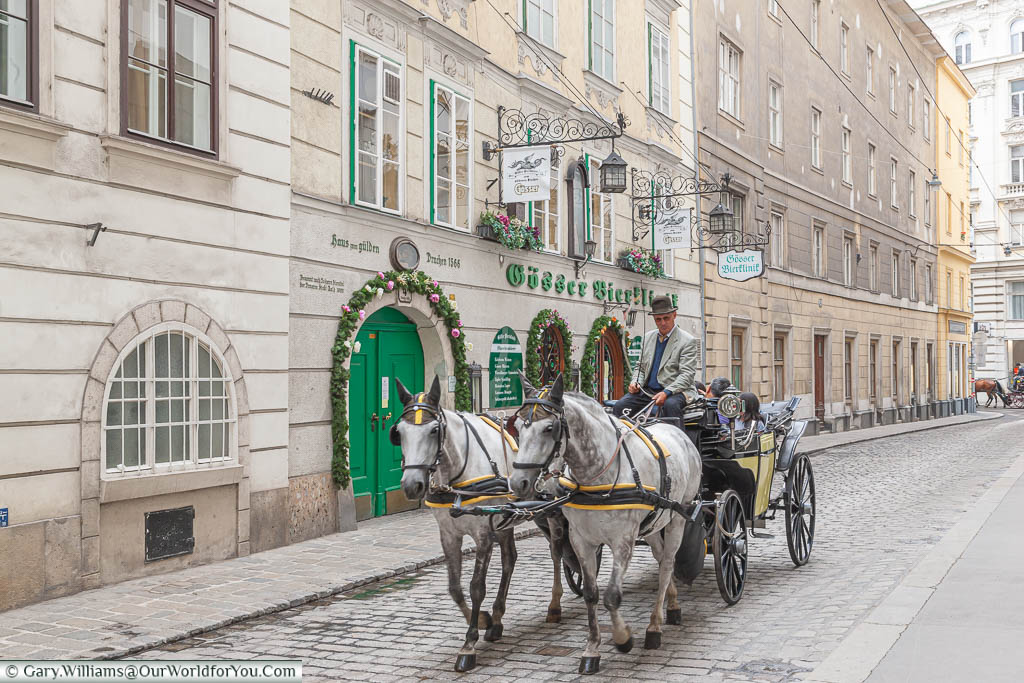 2 dappled grey horses pull a carriage through the historic centre of Vienna.