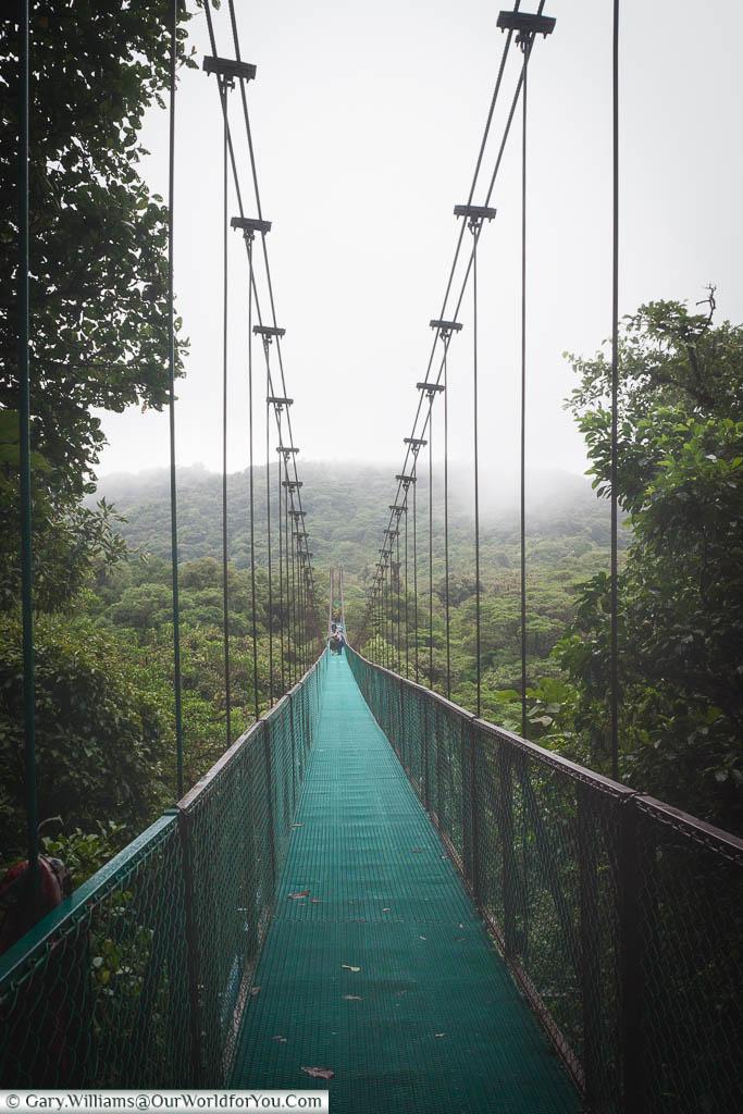 Looking across a long, steel, hanging bridge between two peaks in the Cloud Forest Reserve in Monteverde, Costa Rica