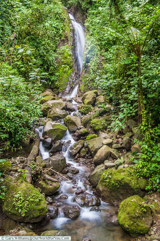 A small waterfall flowing through the Mistico Arenal Hanging Bridges Park in Costa Rica