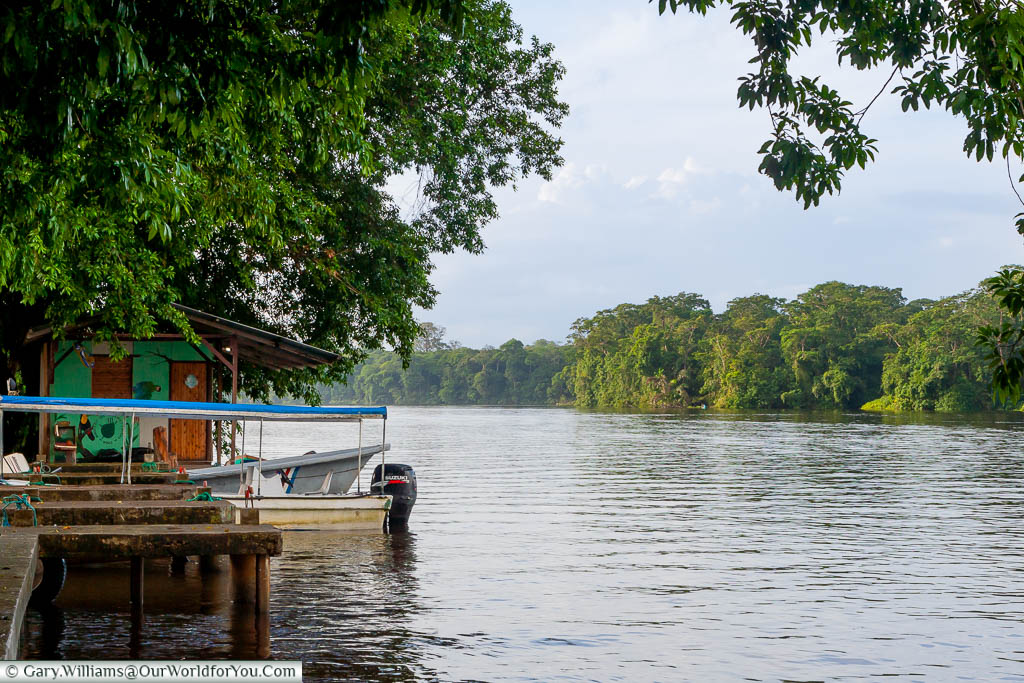 At the lagoon's edge, where the boats dock for Laguna Lodge in Tortuguero, Costa Rica.  The lagoon is lined with lush rainforest on all sides.