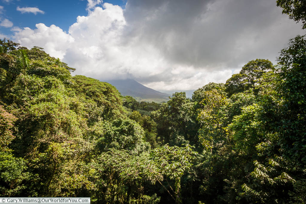 The view of the Arenal Volcano, across the green landscape of Costa Rica, from the Mistico Arenal Hanging Bridges Park.
