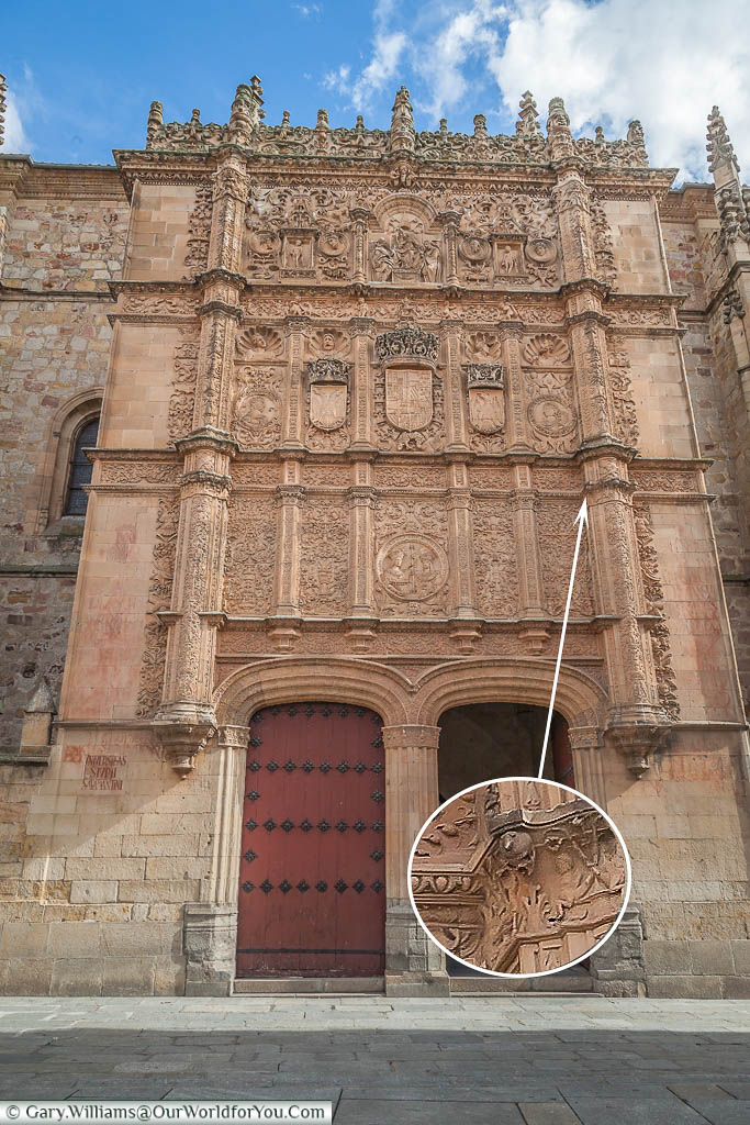 The gothic entrance to the University of Salamanca with the stone frog detail highlighted & magnified.