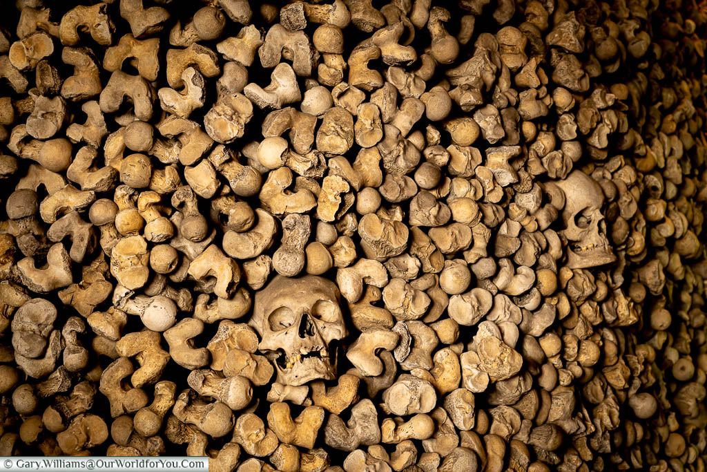 A close up of a collection of bones from the ossuary at St. Leonard's Church and Crypt in Hythe