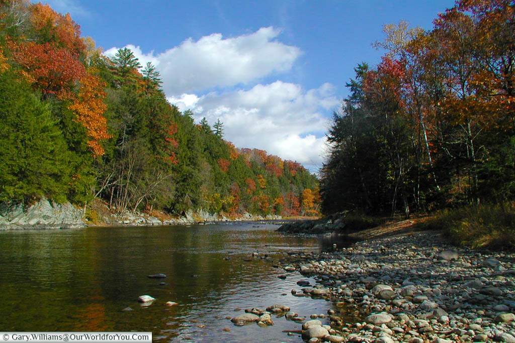 A river running through New England during the fall with a mix of golden foliage on the river banks