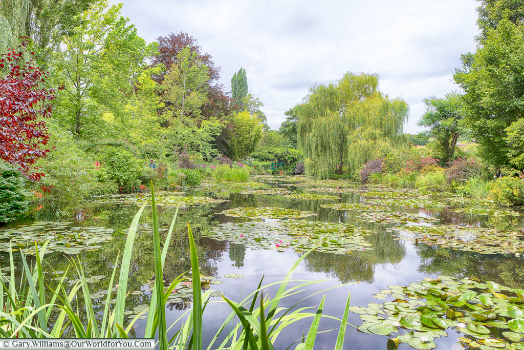 Looking across the lily ponds in Claude Monet's gardens in Giverny on a grey day in July.