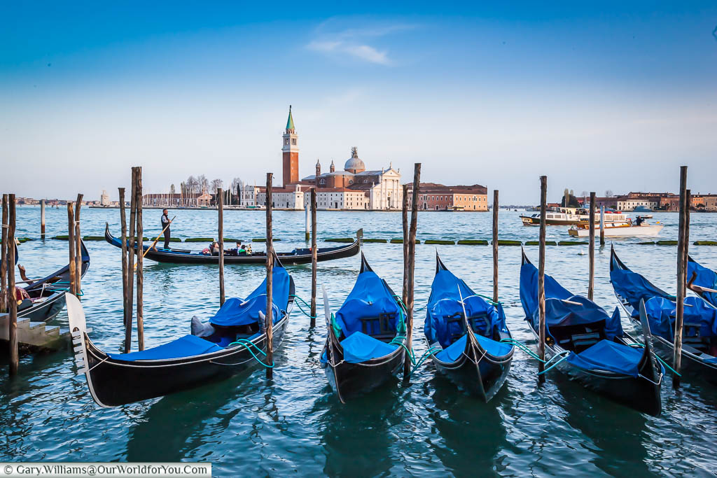Gondolas, with the interior covered with blue protective layers moored up on the edge of St. Mark's Square square, with the Church of San Giorgio Maggiore in the background.