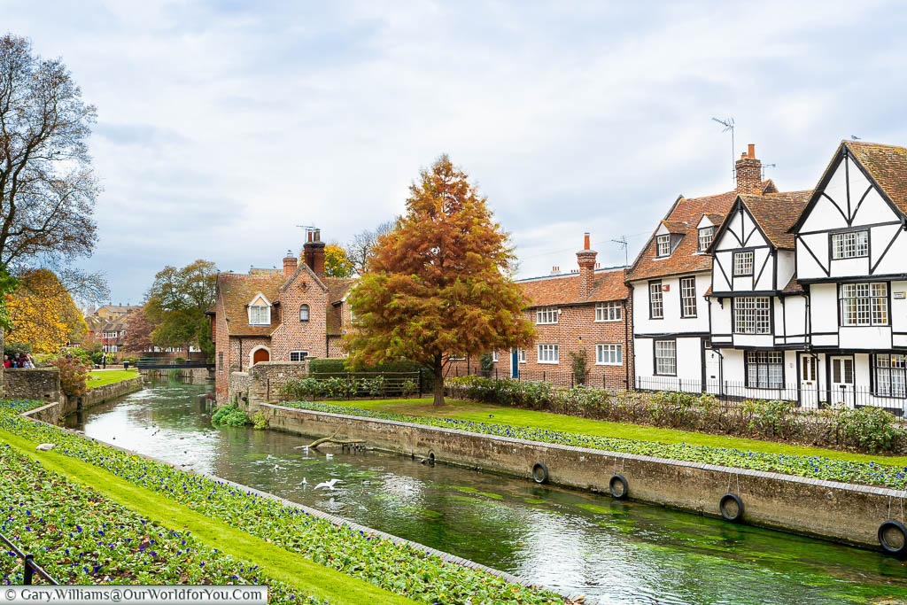 Tudor homes at the edge of the Great Stour River in Westgate Gardens, Canterbury, Kent.