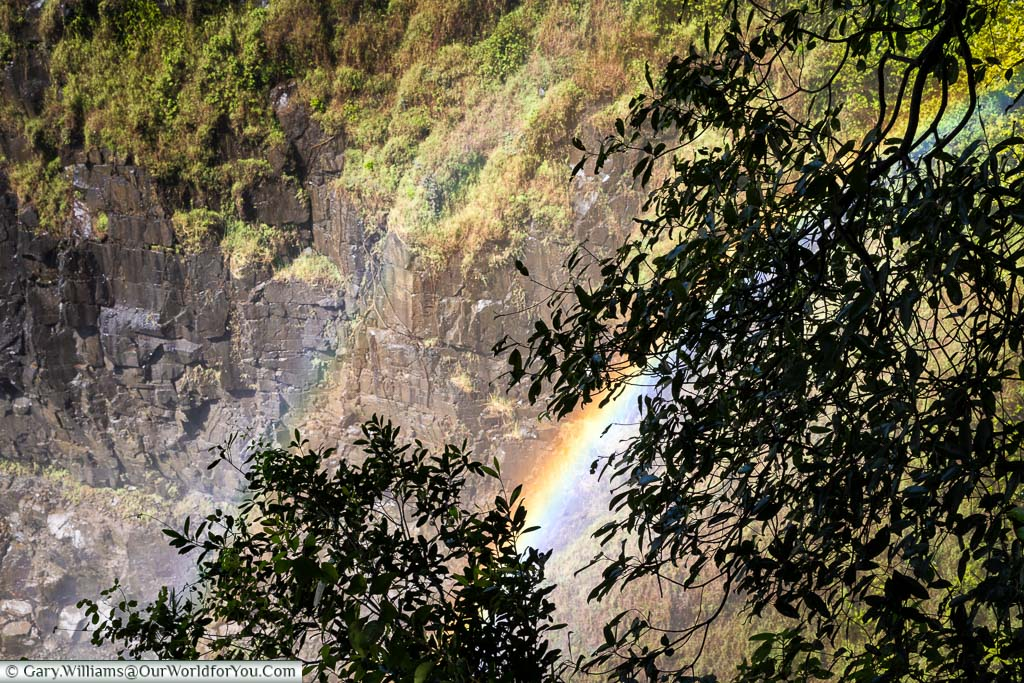 A look through the foliage at the Devil's Cataract to a double rainbow over Victoria Falls in Zimbabwe.