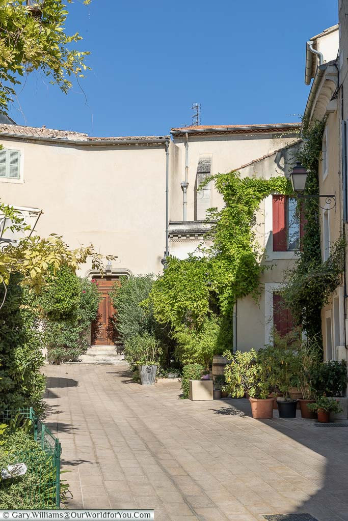 A courtyard in Saint Remy de Provence full of vibrant green growth against the sandstone coloured buildings and a deep blue sky