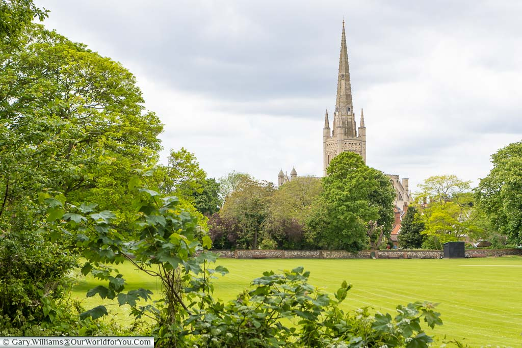 A view of Norwich Cathedral across a green field from the path that runs along the River Wensum