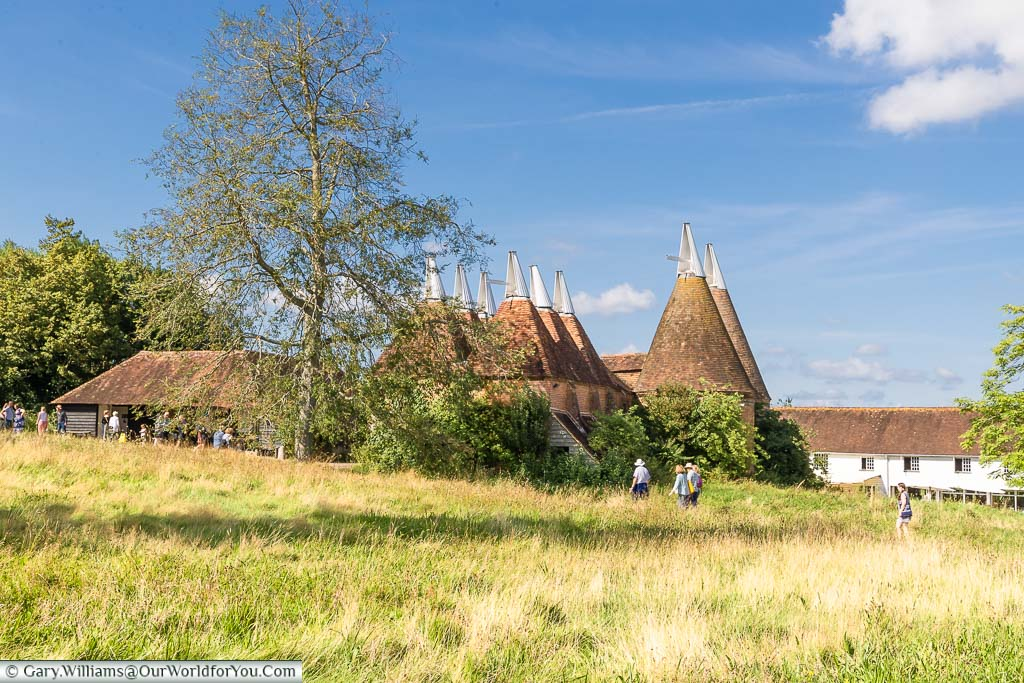 The white-tipped conical roofs of the oast houses at Sissinghurst Castle Garden