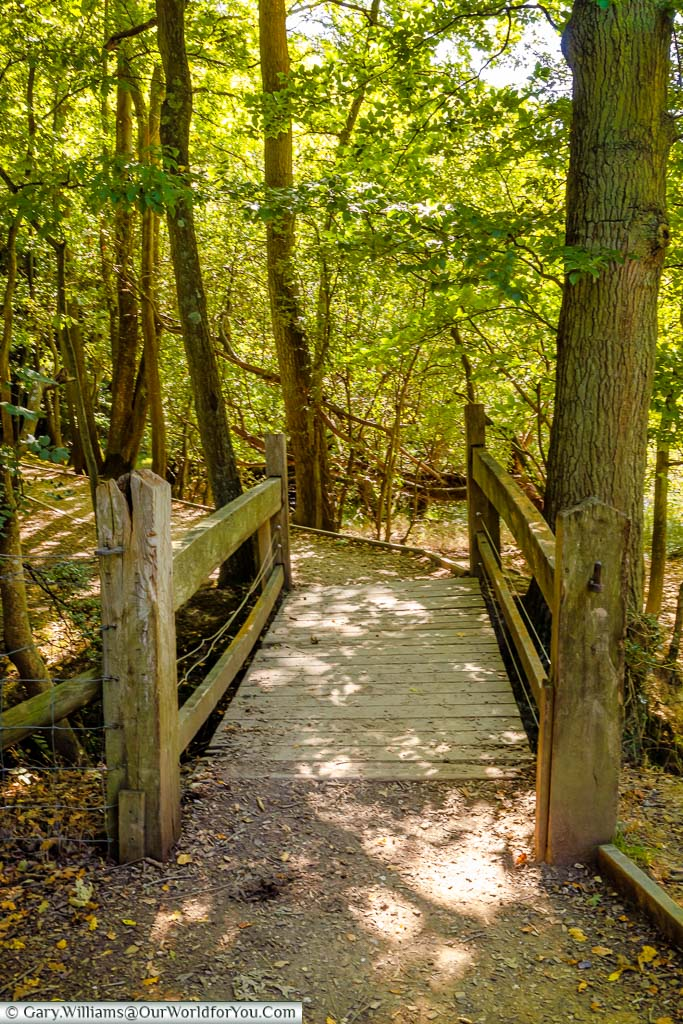 A wooden bridge through the wooded area as part of the path around the battlefield.