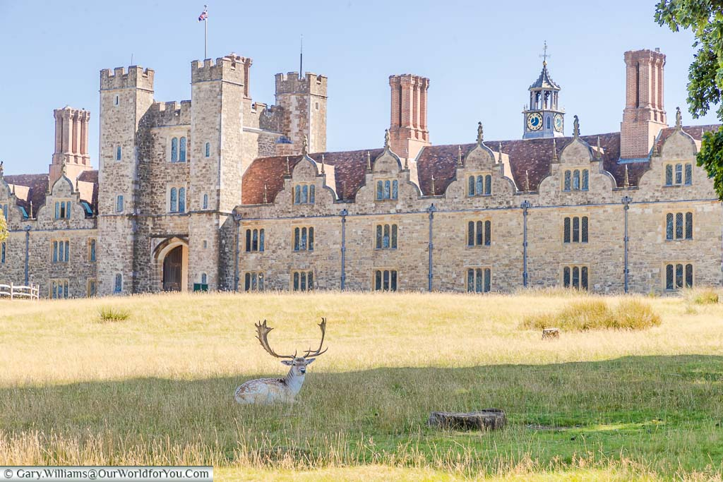 """Featured image for """"A beautiful day at Knole Park in Sevenoaks"""""""